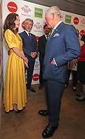 11/03/2020 - Anna Friel, Pierce Brosnan, James Norton and Prince Charles at The Princes Trust Awards 2020 At The London Palladium. Photo Credit: ALPR/AdMedia