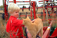 Boy age 4 petting cat on visit to cousin's farm.  Clements Minnesota USA