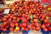Nectarines Palermo food market, Sicily