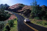 Road to Waimea Canyon and Kokee State Park, West coast, Kauai