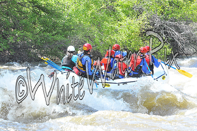 Timberline Tours crashing Interstate, Dead Cow and Rodeo Rapids while running the Lower Eagle River, June 7, 2013, AM, Eagle, Colorado - WhiteWater-Pix   River Adventure Photography - by MADOGRAPHER Doug Mayhew