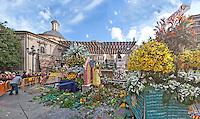 Ofrenda de flores a la Virgen de los Desamparados, Mare de Deu dels Desamparats. Plaza de la Virgen. Plaza de la Verge. Centro de Valencia