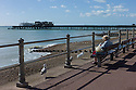 Hastings, UK. 29.09.2012.  Old lady feeding the seagulls with the burnt-out pier in the background. Photo credit: Jane Hobson.