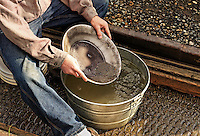 Panning for gold, Alaska