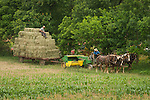 Traditional hay bailing with Amish farmers, four horse team, wagon with bales.