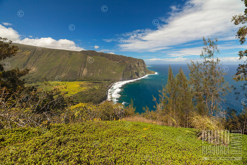 A view into historic Waipi'o (or  Curved Water) Valley from a lookout point along the Hamakua Coast on the  Big Island of Hawai'i.