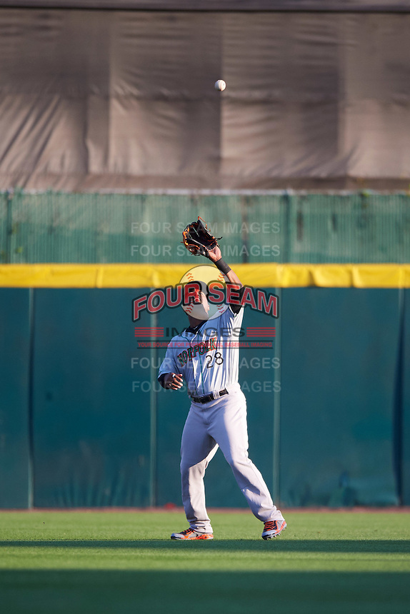Norfolk Tides center fielder L.J. Hoes (28) catches a fly ball during a game against the Buffalo Bisons on July 18, 2016 at Coca-Cola Field in Buffalo, New York.  Norfolk defeated Buffalo 11-8.  (Mike Janes/Four Seam Images)