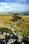 Norber glacial erratics limestone scenery, Yorkshire Dales national park, England
