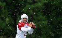 Jul 31, 2009; Flagstaff, AZ, USA; Arizona Cardinals quarterback Tyler Palko drops back to pass in the rain during training camp on the campus of Northern Arizona University. Mandatory Credit: Mark J. Rebilas-