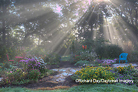 63821-23715 Sun rays in fog in flower garden, Marion Co., IL