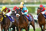 TAKARAZUKA,JAPAN-APRIL 08: Almond Eye #13,ridden by Christophe Lemaire,wins the Oka Sho (Japanese 1000 Guineas) at Hanshin Racecourse on April 8,2018 in Takarazuka,Hyogo,Japan (Photo by Kaz Ishida/Eclipse Sportswire/Getty Images)