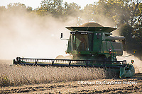 63801-07308 Soybean harvest with John Deere combine in Marion Co. IL