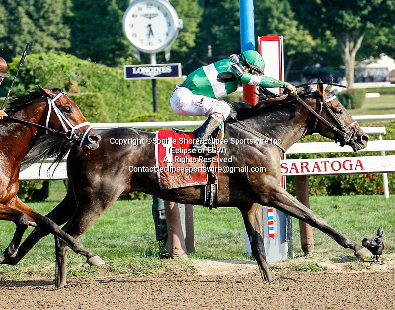 Exaggerator (no. 1), ridden by Junior Alvarado and trained by Keith Desormeaux, wins the 115th running of the Grade 2 Saratoga Special Stakes on August 16, 2015 at Saratoga Race Course in Saratoga Springs, NY (Sophie Shore/Eclipse Sportswire).