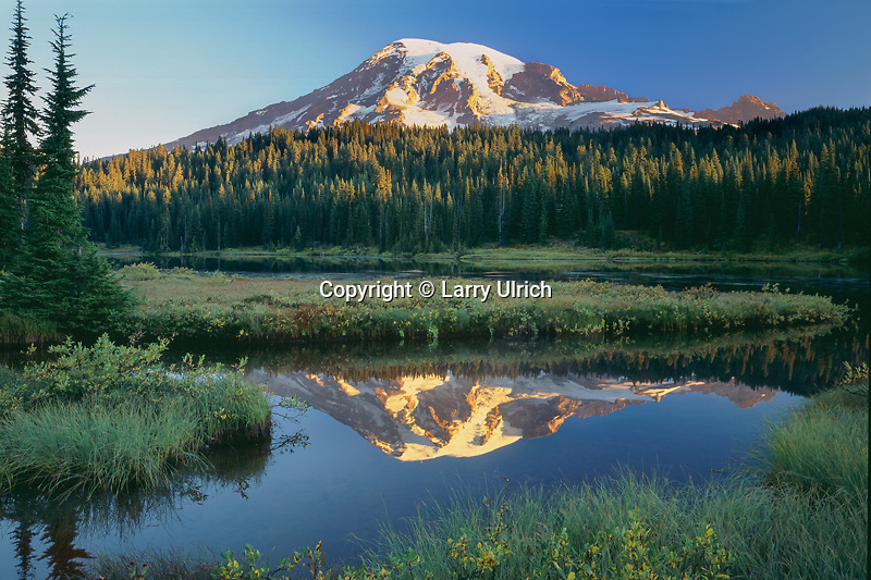 Mount Rainier<br />