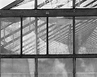 &quot;Ceiling Supports&quot; Gibson Greenhouses, Maryville, Tennessee<br />