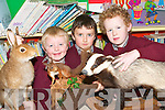 ANIMAL MAGIC: Conor Hennessy, Eamon Lawlor and Sean Moloney, pupils from Kilconly National School in Ballybunion, with some of the stuffed animals on display at the school this week.   Copyright Kerry's Eye 2008