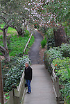 woman on path to Rose Cottage in Carmel