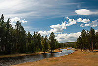 A small creek flows near the middle geyser basin, Yellowstone National Park, Wyoming