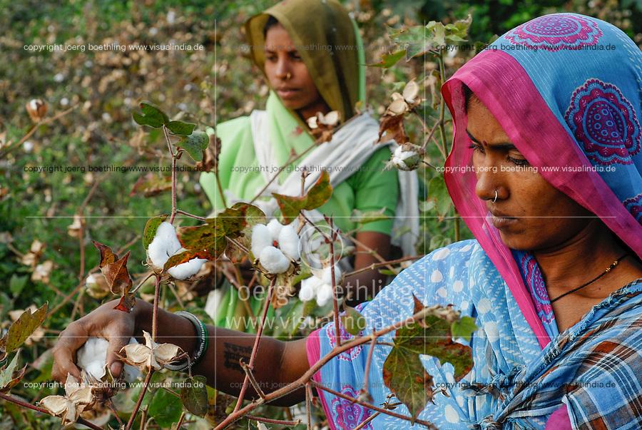 INDIA Madhya Pradesh , organic cotton project bioRe in Kasrawad , woman harvest bio cotton by hand / INDIEN Madhya Pradesh , bioRe Projekt fuer biodynamischen Anbau von Baumwolle in Kasrawad, Frauen ernten Biobaumwolle durch Handpflueckung