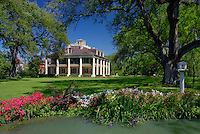 Live oaks, Houmas House Plantation and Gardens<br />