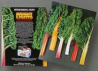 Salad Savoy Product Sheet