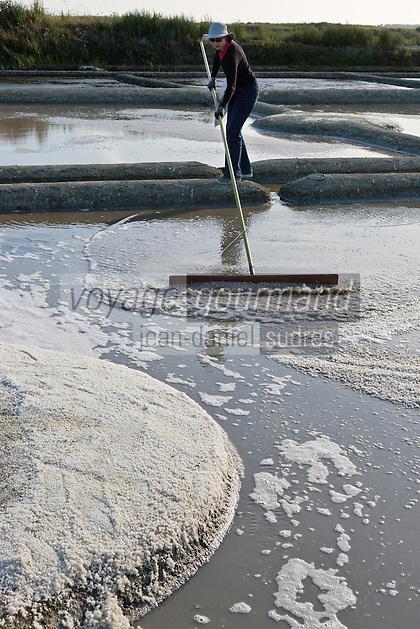 Europe/France/Pays de la Loire/44/Loire Atlantique/Guérande: Les marais salants de Guérande  - AUTO N°: 2012-428