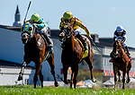 September 7, 2019 : Cambria #4, ridden by Tyler Gaffalione, wins the Kentucky Downs Juvenile Turf Sprint during racing at Kentucky Downs in Franklin, Kentucky. Scott Serio/Eclipse Sportswire/CSM