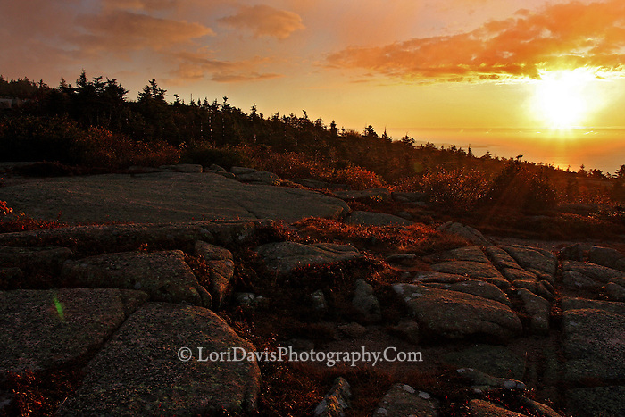 Autumn Sunrise from Summit of Cadillac Mt.  #A37