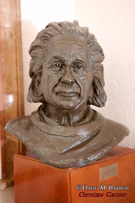Bust Of Albert Einstein at the Chiam Weizmann Institute