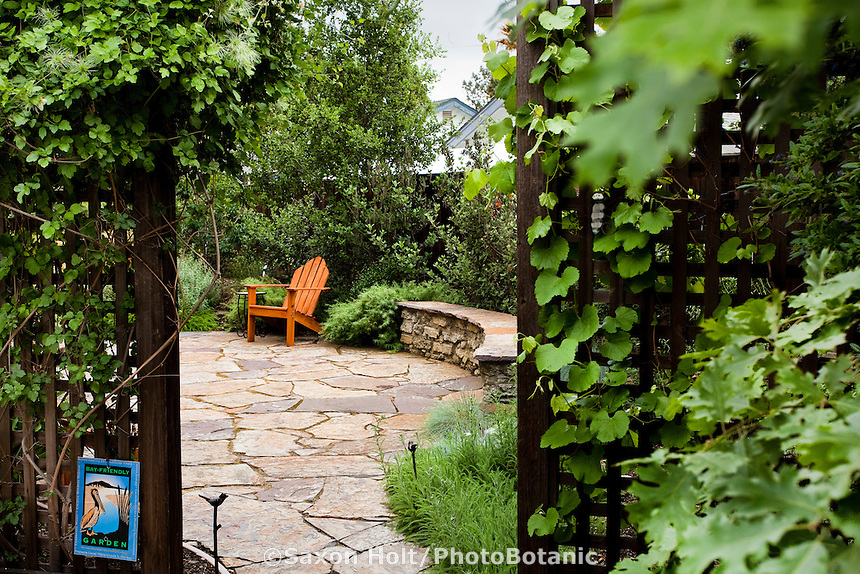 Backyard patio entrance through lattice trellis covered with vines into Bay Friendly California native plant garden