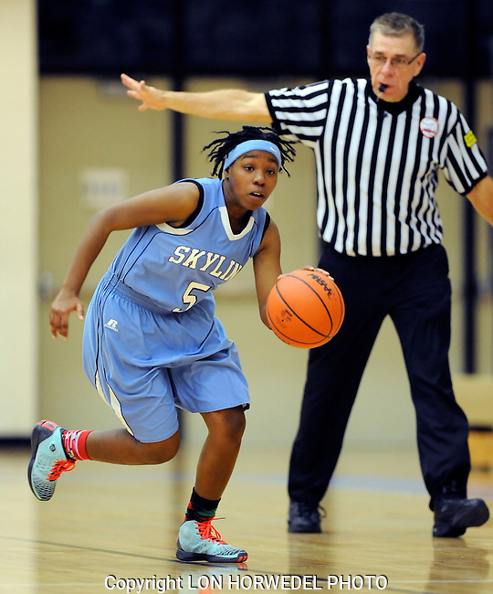 Skyline vs Huron girl's junior varsity high school basketball at Skyline High School, Wednesday, December 17, 2014.