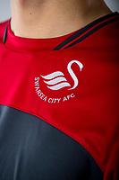 Swansea City FC kit photo shoot at the Liberty Stadium, Wales, UK. Wednesday 03 May 2017