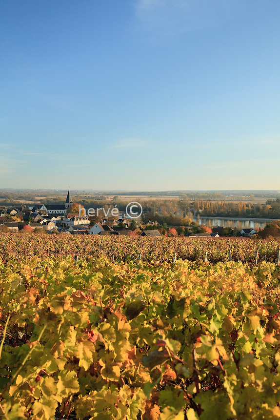 France, Nièvre (58), Pouilly-sur-Loire, la petite ville et le vignoble en automne  // France, Nièvre, Poulliy-sur-Loire, the little town and the vineyard in autumn