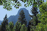 Yosemite Valley in July