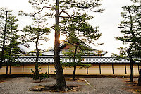 Day breaks over the walled temple complex and the pine trees at Kyoto's Myoshin-ji Temple.