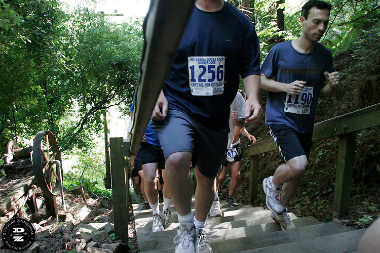 Robert Rasmussen(1256) and  David Moskowitz (1190) of San Francisco, Calif. join other runners making their way up the Dipsea stairs in Mill Valley, Calif on Sunday, June 8, 2008.  The Dipsea starts in Mill Valley, goes over Mt. Tamalapais, and ends in Stinson Beach.