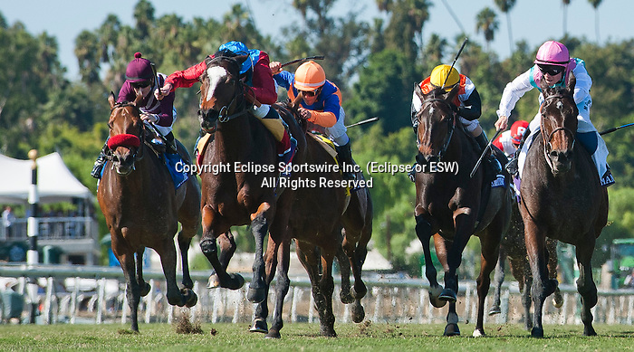 Dank , ridden by Ryan Moore, and trained by Sir Michael Stoute  wins the Breeders' Cup Filly & Mare Turf (G1) on November 2, 2013 at Santa Anita Park in Arcadia, California during the 30th running of the Breeders' Cup.