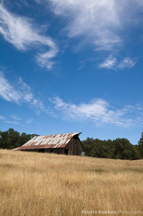 An old barn sits in a field near Jackson, California