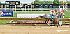 Cassatt winning at Delaware Park on 7/16/14