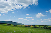 Scenic view of rural countryside, Hay Bluff, Brecon Beacons national park, Wales
