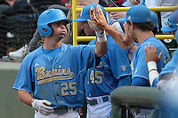 Beau Amaral #25 of the UCLA Bruins is greeted by teammates after scoring during a game against the Washington State Cougars at Jackie Robinson Stadium on March 24, 2012 in Los Angeles,California. UCLA defeated Washington 12-3.(Larry Goren/Four Seam Images)