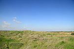Israel, Shephelah, Tel Miqne, site of biblical Ekron