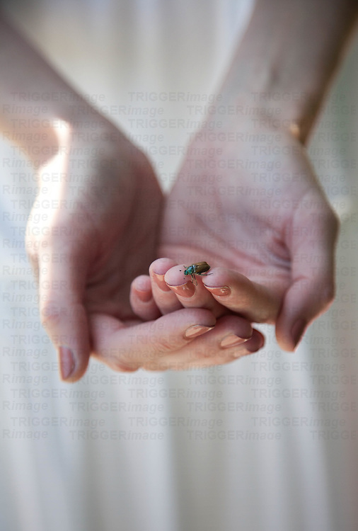 Young womans hands holding bug