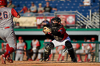 Batavia Muckdogs catcher Michael Hernandez (29) catches a throw for a play at the plate during a NY-Penn League game against the Williamsport Crosscutters on August 25, 2019 at Dwyer Stadium in Batavia, New York.  Williamsport defeated Batavia 10-3.  (Mike Janes/Four Seam Images)