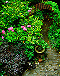 Garden Path, Cypress Garden, Mill Valley, California