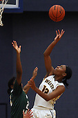 West Bloomfield at Clarkston, Girls Varsity Basketball, 12/2/14