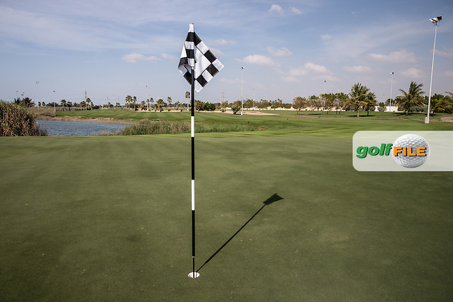 8th green, The Track at The Meydan Golf Club, Dubai, United Arab Emirates.  31/01/2016. Picture: Golffile   David Lloyd<br /> <br /> All photos usage must carry mandatory copyright credit (&copy; Golffile   David Lloyd)