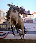 Joel Schlegel competes in the bareback bronc riding event at the Reno Rodeo in Reno, Nev., on Thursday, June 27, 2013.<br /> Photo by Cathleen Allison