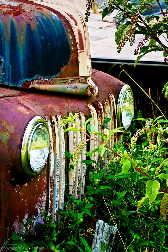"A 40's era Ford truck photographed among the berry bushes of a summer's field in a little burg Called ""Pleasant Hill"".  From the ""Road Trip"" collection."