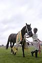 Horse Racing : Procyon Stakes at Chukyo Racecourse